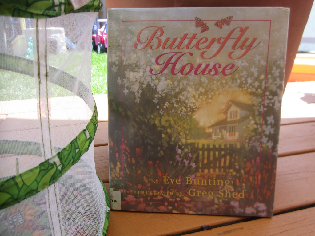 We are still waiting for our Butterflies to hatch in the meantime we've enjoyed reading this lovely story titled Butterfly House written by Eve Bunting.