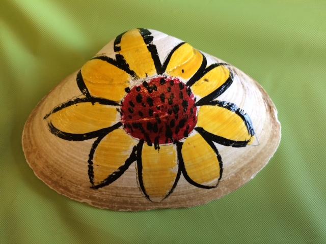 Sunflower shell