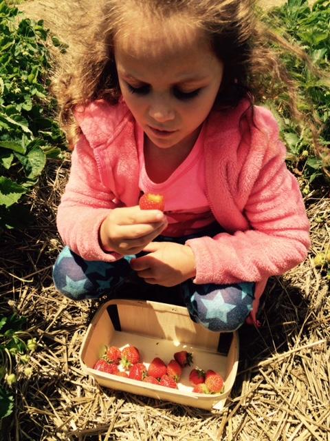 oooh strawberry